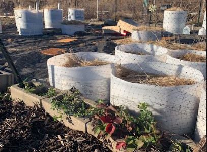 Rolla community making it easier to begin composting
